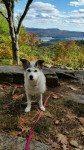 Jodys Hikes Warrensburg Travel Park Campground